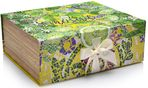 NEW Giftbox XL Limy Lavender